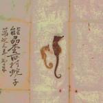 全国の郷土ずし紹介 12月号 石川県七尾市の「松百ずし」
