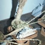 ◆全国の郷土ずし紹介 4月号 滋賀県マキノ町の「ウグイずし」◆