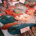 ◆全国の郷土ずし紹介 9月号  沖縄県那覇市の「イラブチャーのすし」◆
