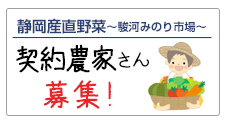 Shizuoka sanitary vegetables Farmers looking for a grocers shipping entrance contract